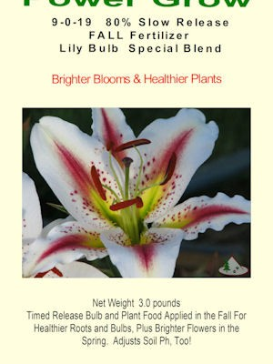 FALL Lily Bulb and Plant Fertilizer