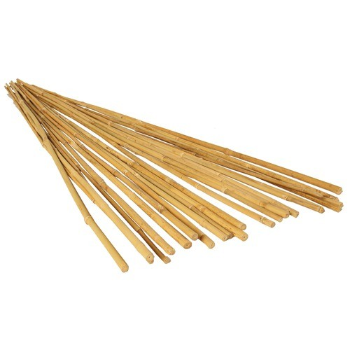 25 pack natural bamboo plant stakes lily flower store